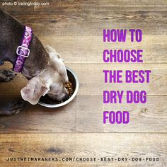 Learn how to pick the best dry dog food for your Weimaraner! http://justweimaraners.com/choose-best-dry-dog-food/