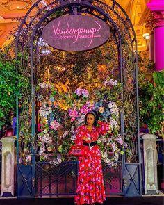 The Real Housewives Of Las Vegas ?) Would you watch The Real Housewives Of Las Vegas? It's not a thing (yet). Las Vegas Vacation, Las Vegas Blvd, Las Vegas Hotels, Las Vegas Strip, Weather In Belize, Las Vegas Free, Lisa Vanderpump, Vanderpump Rules, Wedding Videos