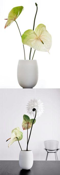 Lilith Rockett egg vase