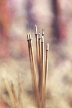 Incense Sticks by Good Vibrations Images - Stocksy United Incense Photography, Incense Sticks, Best Vibrators, Spiral, Hair Accessories, The Unit, American, Image, Hair Accessory