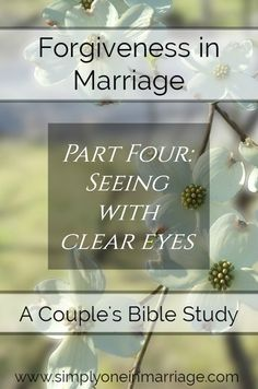Forgiveness in Marriage - Part Four: Seeing with Clear Eyes - A Couple's Bible Study | Simply One in Marriage.