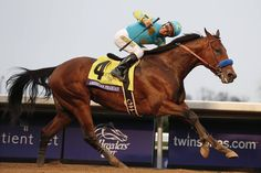 American Pharoah, with Victor Espinoza up, wins the Breeders' Cup Classic horse race at Keeneland...31 Oct 2015.
