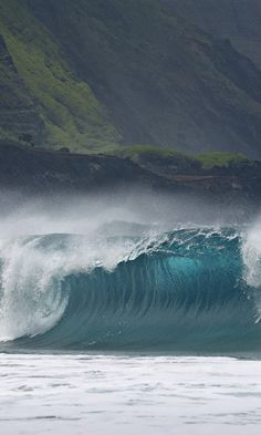 Breaking Wave Molokai