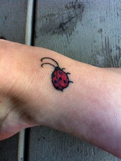 Ladybug tattoo~to cover up my messed up one...