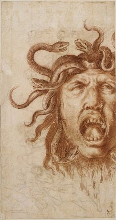 Head of Medusa , Giacinto Calandrucci ( Neapolitan and Sicilian School ) . The Louvre also states may be Workshop of Giacinto Calandrucci , Sanguine of two colours.  H. 322 mm x L. 170 mm.