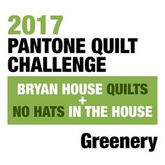 Rebecca/ Bryan House Quilts and Sarah/ No Hats in the House are spear-heading the 2017 Pantone Quilt Challenge featuring. Goodie Basket, 2017 Challenge, Monochromatic Color Scheme, House Quilts, Fabric Gifts, Applique Quilts, Hand Quilting, Color Card, Pantone
