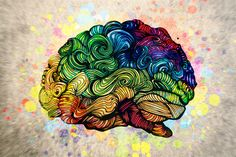 http://www.iflscience.com/brain/genes-work-together-intelligence-networks-within-your-brain