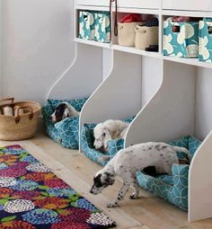 What a great way to keep your dogs' beds and misc. (in bins above) in place :)