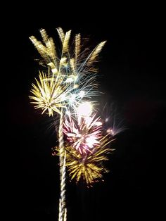 Multiple Fireworks by Cynthia Woods
