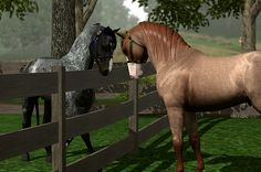 Sims 3 Foals foal crop 2013 | First bred Quarab at Lakeside Ranch