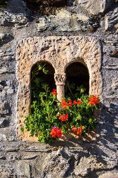 geraniums in stone window - french/spanish border (cedric rey)