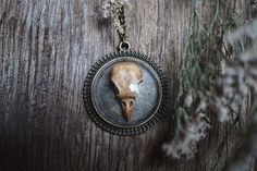 Sometimes solitude is one of the most beautiful things on earth -Charles Bukowski   ( Necklace by Kruel Intentions )