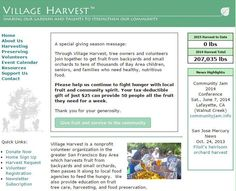 Village Harvest addresses two problems: too much food falling from the trees and too many hungry people.