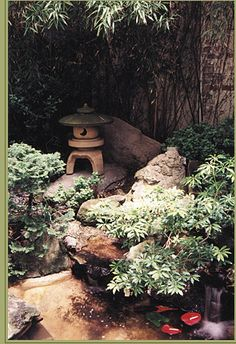 backyard Japanese garden