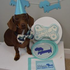 Banners | Dachshund Garland – The Smoothe Store