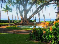 Puamana Vacation Rental - VRBO 140 - 3 BR Lahaina Townhome in HI, Oceanfront Townhome. Spectacular Views, Private Beach in Front of Unit
