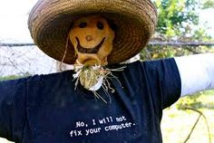 Image result for diy scarecrow