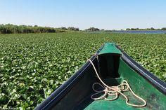 Danube Delta (UNESCO) - Romania
