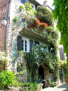 Le haut de Cagnes  net-provence.com  ~ so charming how the cacti grow around the entrance! Lovely house.