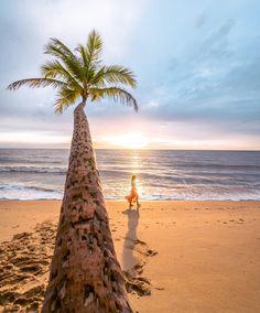See my full Australia epic road trip guide! Clifton Beach, Best Surfing Spots, Break Wall, Mission Beach, Airlie Beach, Cairns, Sunshine Coast, Australia Travel, That Way