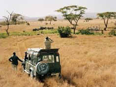 I wanna go on safari!