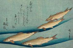 thekimonogallery:    Trout.  Ukiyo-e woodblock print, 1833, Japan, by artist Utagawa Hiroshige
