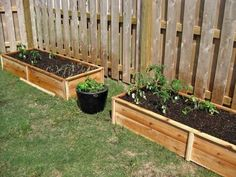 Ten Dollar Raised Garden Beds