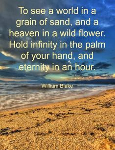 to-see-the-the-world-in-a-grain-of-sand.jpg (550×715)