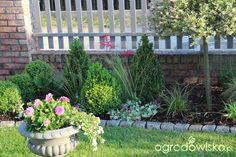 Znalezione obrazy dla zapytania mały ogródek przed domem
