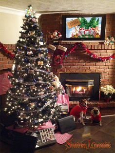 Enter Save a Loonie's 20 days of Giveaways! Christmas Giveaways, Merry Christmas To All, Christmas Time, Diy Craft Projects, Crafts For Kids, Beautiful Christmas Scenes, Coupon Site, Canadian Contests, Xmas Pics