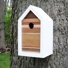 Modern Contemporary Reclaimed Wood Birdhouse / Nest Box / One-of-a-kind / Multi-woods Birdhouse Designs, Birdhouse Ideas, Modern Contemporary, Modern Design, Modern Birdhouses, Shade Grass, Bird House Plans, Bird Houses Diy, Into The Woods