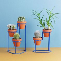/ STEP up your plant game with these playful + modern plant stands by Washington, DC based designer His Ministep and Minispiral plant stands are a terrific way to green your desk, windowsill or kitchen island. — Justin Donnelly's Bez Metal Plant Stand, Modern Plant Stand, Diy Plant Stand, Plant Stands, House Plants Decor, Plant Decor, Potted Plants, Indoor Plants, Art Fer