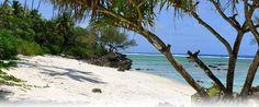 Tahiti, Destinations, Cravings, Beach, Water, Outdoor, Birthday, Travel, Gripe Water