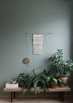 gray-green walls.