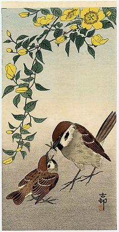✽ ohara koson - sparrow feeding her chick - - woodblock print Illustrations, Illustration Art, Ohara Koson, Art Chinois, Japan Painting, Art Japonais, Arte Floral, Japanese Prints, Japan Art