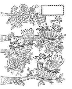 Cindy Wilde - Birds in Nests - Cindy Wilde. Bird Coloring Pages, Adult Coloring Pages, Coloring Books, Bird Doodle, Doodle Art, Bird Template, Scandinavian Folk Art, Quilling Patterns, Digital Stamps