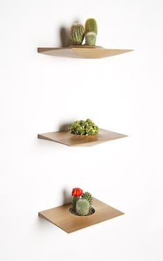 If It's Hip, It's Here: Mid-Century Modern Wall-Mounted Plant Pods For Succulents by Dominic Fiorello Studio.