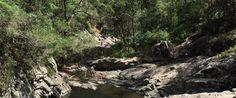 #Cedar #Creek #Falls #Mt #Tamborine with #Kids