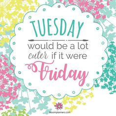 Tuesday Quotes Good Morning, Good Morning For Him, Happy Tuesday Quotes, Tuesday Humor, Good Morning World, Good Morning Happy, Happy Quotes, Emo Quotes, Happy Weekend