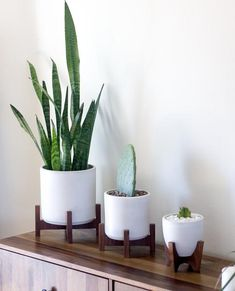 Modern Planter with Plant Stand - Tabletop Cylinder – Object Modern