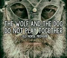 The wolf and the dog do not play together. - Old Norse proverb