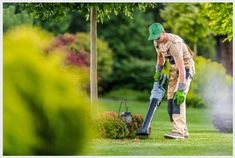 On-Demand lawn Cleaning Mowing Services, Lawn Maintenance, Garden Photos, Leaf Blower, Lawn Care, Lawn Mower, Free Photos, Photo Editing, Backyard