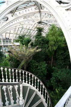 Spend a day wandering around Kew Gardens, London