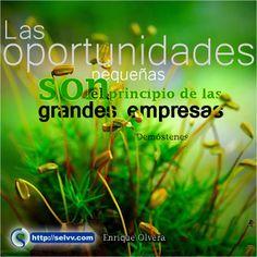 Las oportunidades pequeñas son el principio de las grandes empresas. Demóstenes http://selvv.com/enrique-olvera/ #Selvv