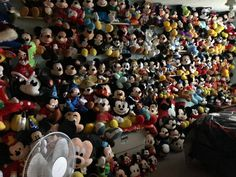 Mickey Mouse Room, Collection