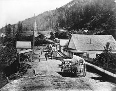 [Covered wagons being driven through Boston Bar] - City of Vancouver Archives Fraser Canyon, Fraser River, Abbotsford Bc, Meanwhile In Canada, Canadian Pacific Railway, Covered Wagon, Canadian History, Historical Pictures, Vancouver Island