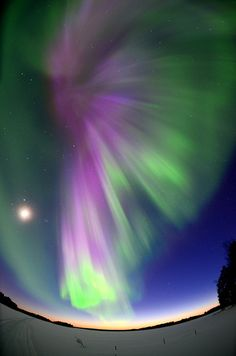 Aurora Borealis - Finland.I want to go here one day.Please check out my website thanks. www.photopix.co.nz