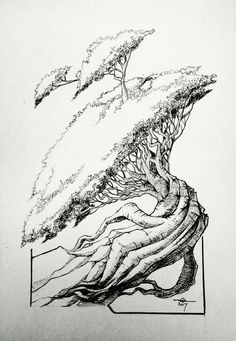 Another tree drawing-2B pencil