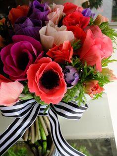 Aneomone Flowers