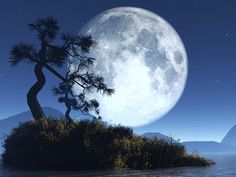 Beautiful Moonlight